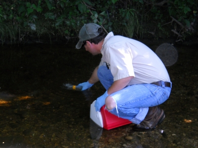 Collecting Water Sample to Take Back to the Lab for DPU