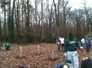 Volunteers Plant Trees at Owl Orchard