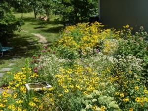 garden July 2013_sm_2