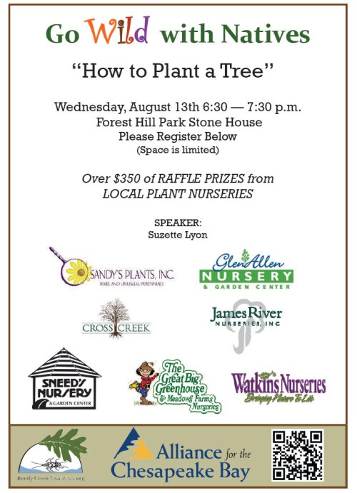how to plant a tree flyer